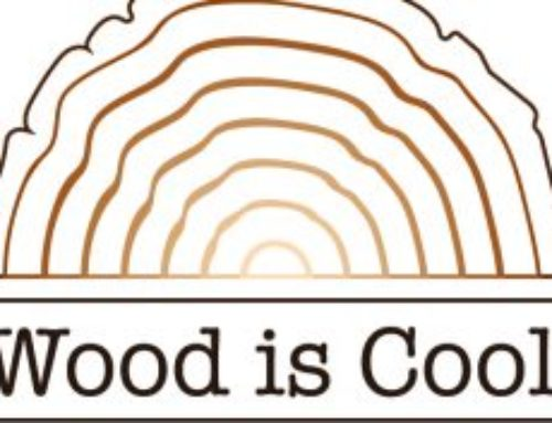 Wood is Cool: A new collaborative project in Russia!